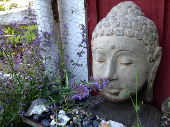 Buddha Smells the Flowers